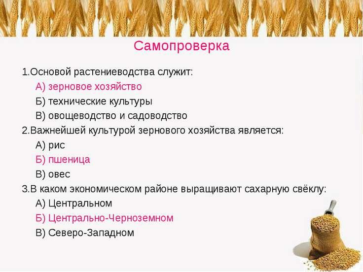 Самопроверка 1.Основой растениеводства служит: А) зерновое хозяйство Б) техни...