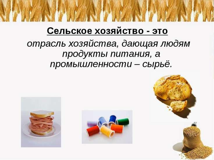 Сельское хозяйство - это отрасль хозяйства, дающая людям продукты питания, а ...