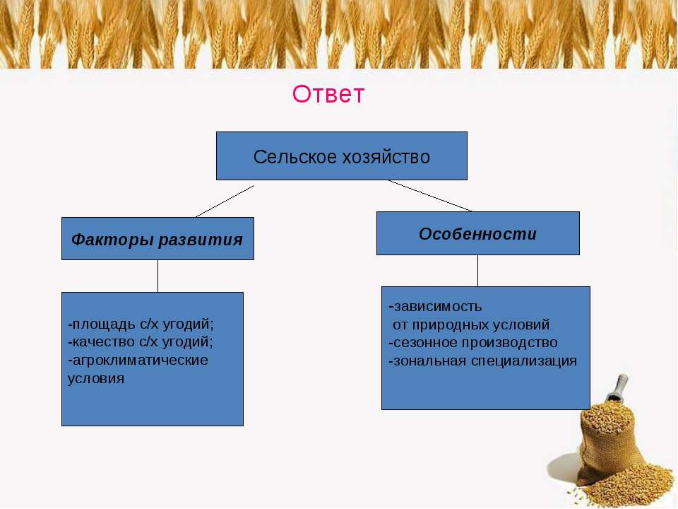Ответ Сельское хозяйство Факторы развития Особенности -площадь с/х угодий; -к...