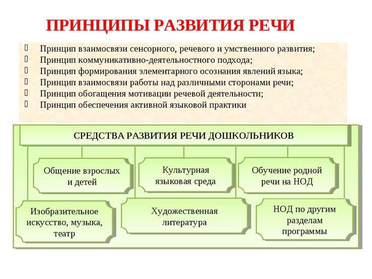 ПРИНЦИПЫ РАЗВИТИЯ РЕЧИ Принцип взаимосвязи сенсорного, речевого и умственного...