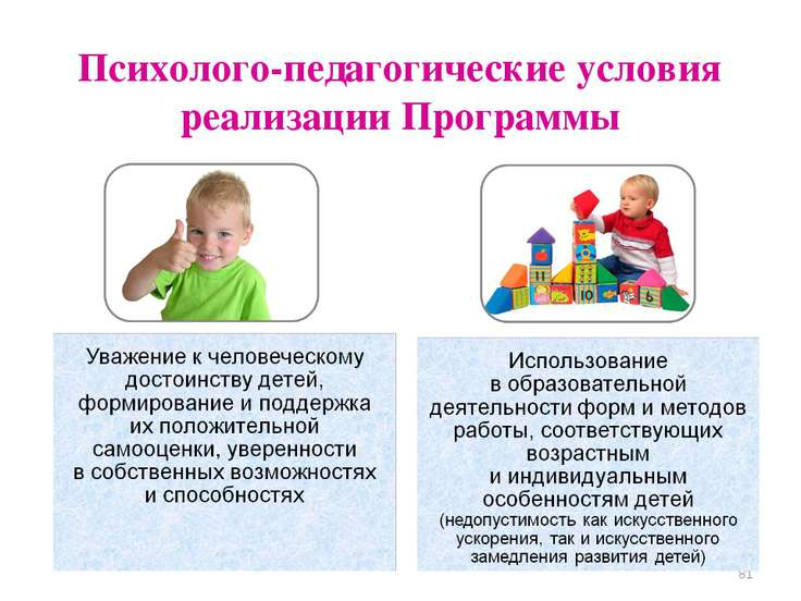 Психолого-педагогические условия реализации Программы *