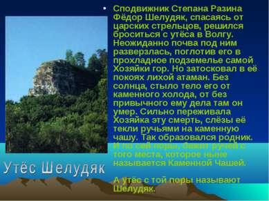 Сподвижник Степана Разина Фёдор Шелудяк, спасаясь от царских стрельцов, решил...