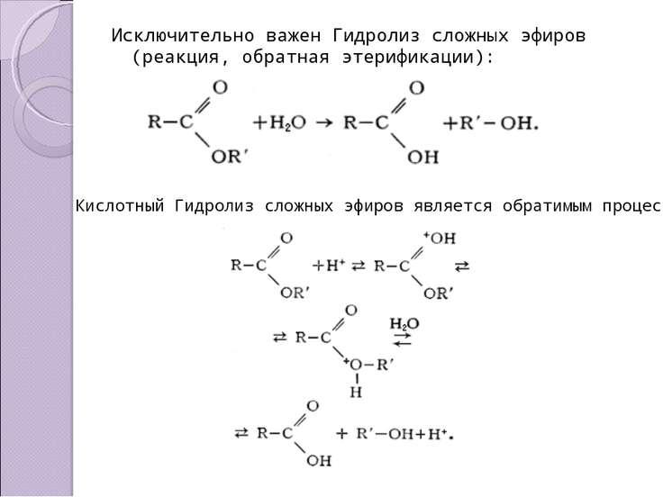 Исключительно важен Гидролиз сложных эфиров (реакция, обратная этерификации):...
