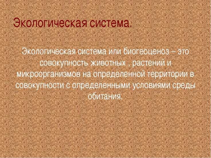 Экологическая система. Экологическая система или биогеоценоз – это совокупнос...