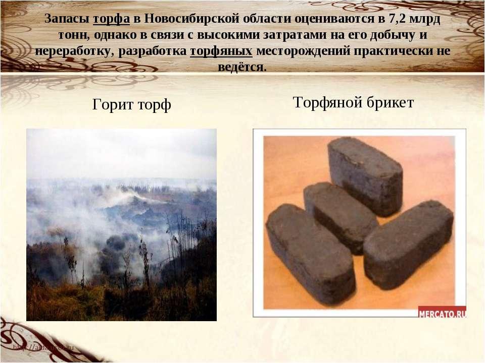 Запасы торфа в Новосибирской области оцениваются в 7,2млрд тонн, однако в св...