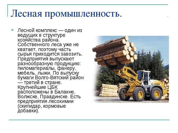 Лесная промышленность. Лесной комплекс — один из ведущих в структуре хозяйств...