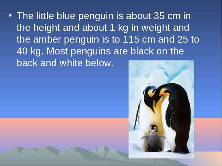 The little blue penguin is about 35 cm in the height and about 1 kg in weight...