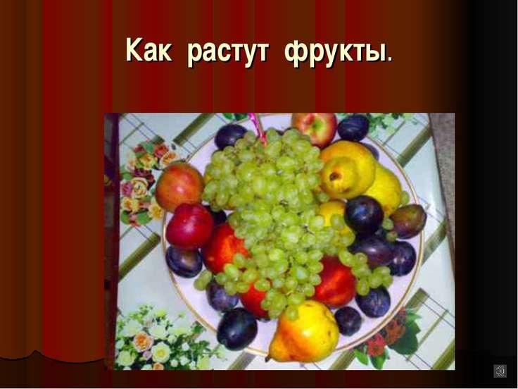 Как растут фрукты.