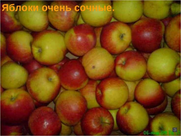 Яблоки очень сочные.