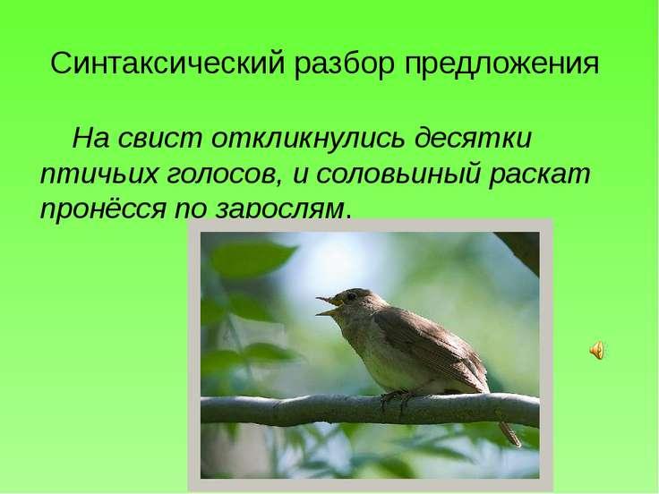 Синтаксический разбор предложения На свист откликнулись десятки птичьих голос...