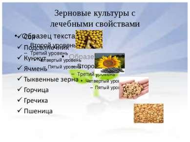 Зерновые культуры с лечебными свойствами