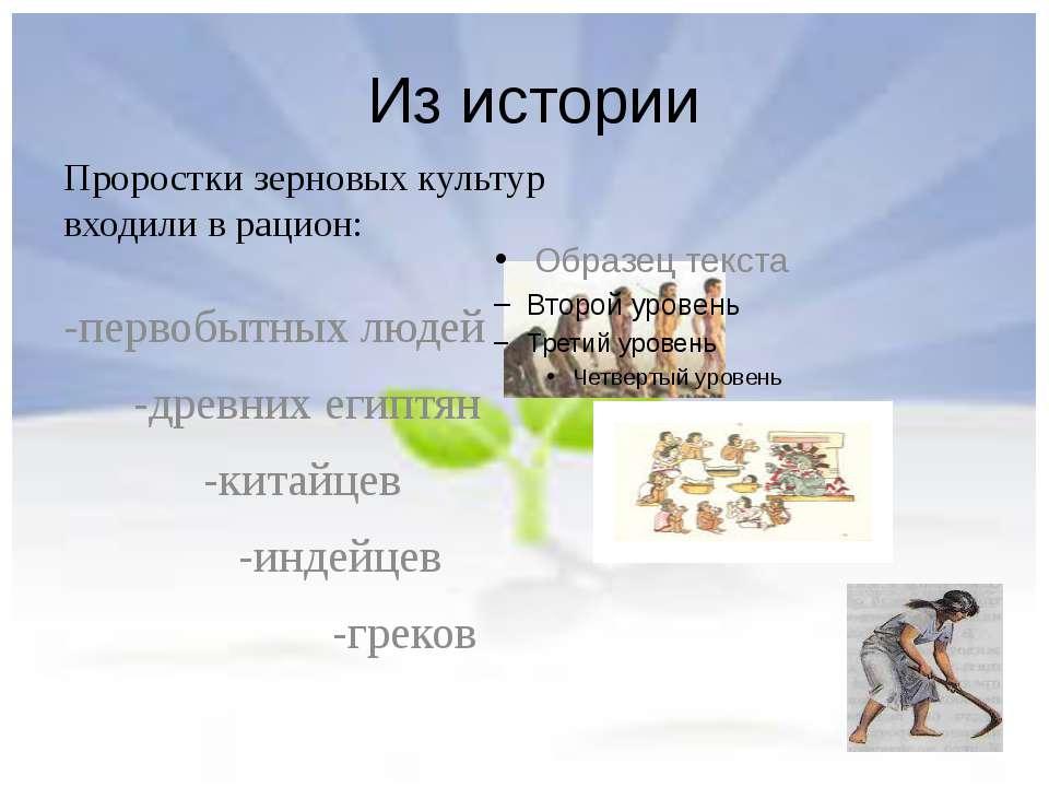 Из истории Проростки зерновых культур входили в рацион: -первобытных людей -д...