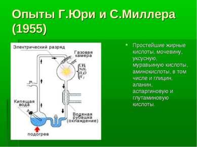 Опыты Г.Юри и С.Миллера (1955) Простейшие жирные кислоты, мочевину, уксусную,...