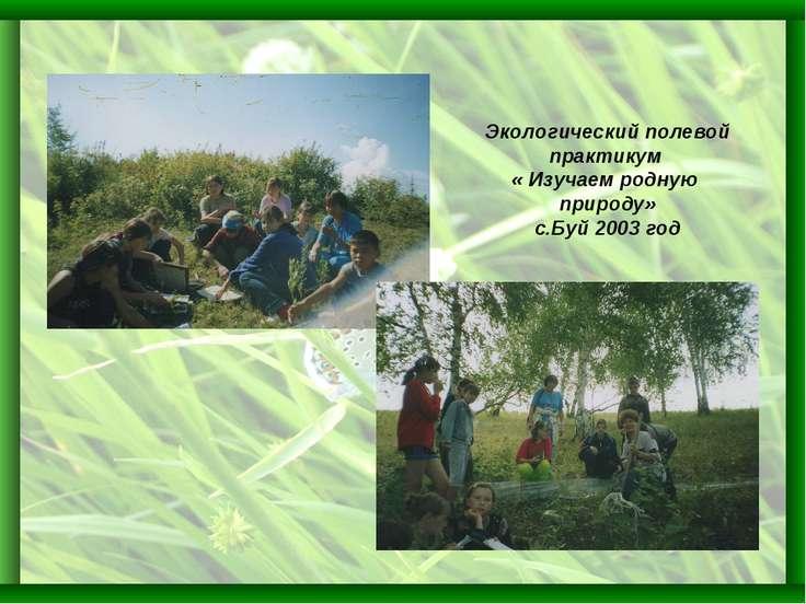 Экологический полевой практикум « Изучаем родную природу» с.Буй 2003 год