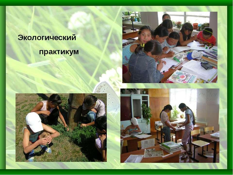 Экологический практикум