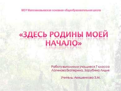 МОУ Малозиновьевская основная общеобразовательная школа