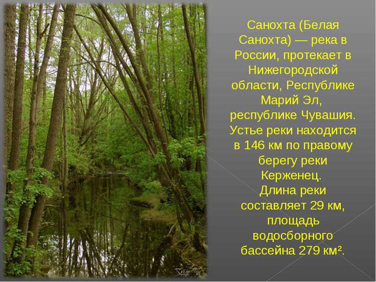 Санохта (Белая Санохта) — река в России, протекает в Нижегородской области, Р...