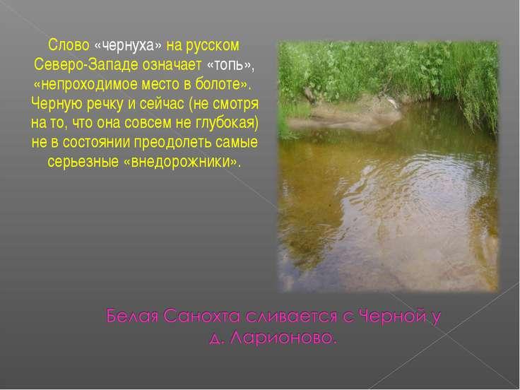 Слово «чернуха» на русском Северо-Западе означает «топь», «непроходимое место...