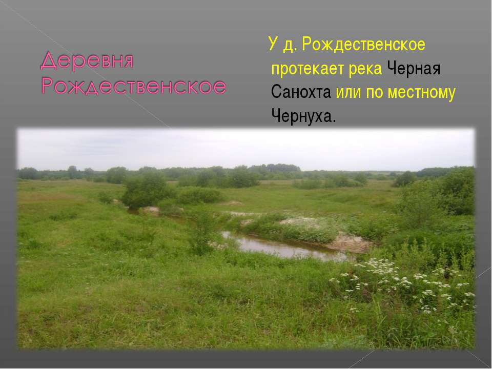 У д. Рождественское протекает река Черная Санохта или по местному Чернуха.