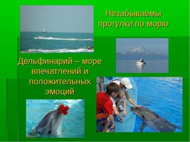 Дельфинарий – море впечатлений и положительных эмоций Незабываемы прогулки по...
