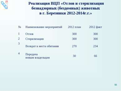 Реализация ВЦП «Отлов и стерилизация безнадзорных (бездомных) животных в г. Б...