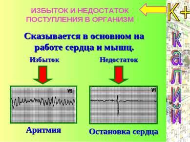 Сказывается в основном на работе сердца и мышц. ИЗБЫТОК И НЕДОСТАТОК ПОСТУПЛЕ...
