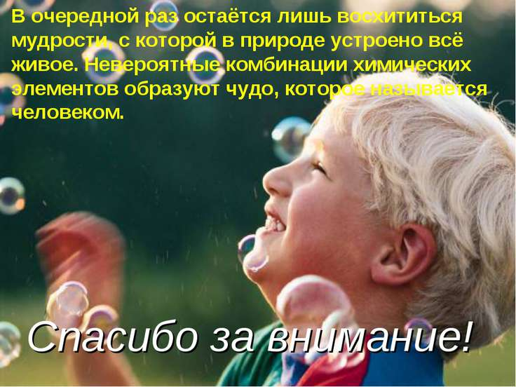 В очередной раз остаётся лишь восхититься мудрости, с которой в природе устро...