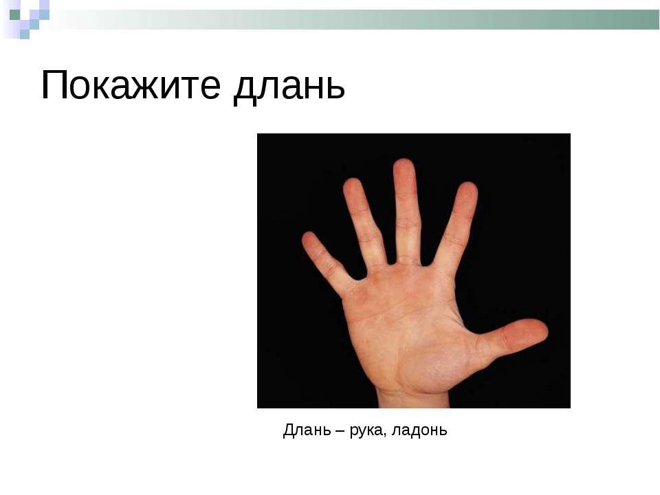Покажите длань Длань – рука, ладонь