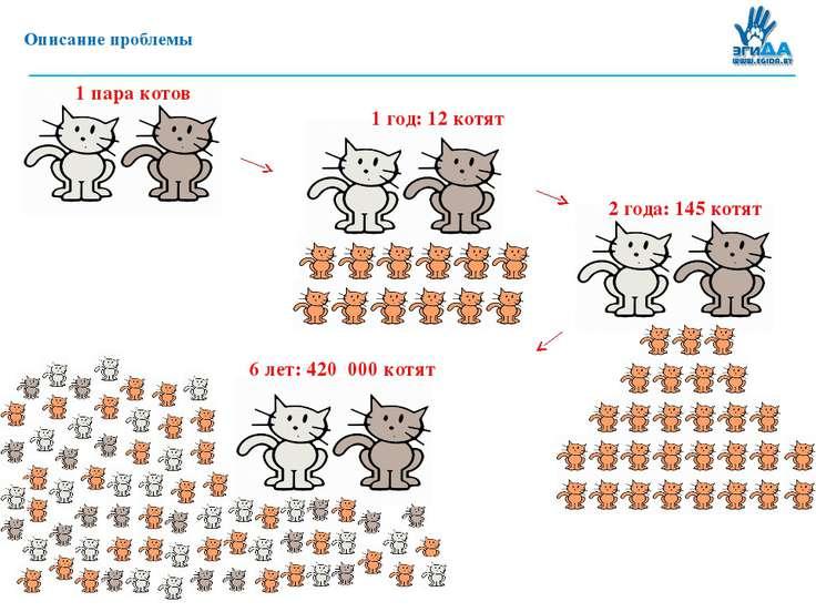 Описание проблемы 1 год: 12 котят 2 года: 145 котят 1 пара котов 6 лет: 420 0...