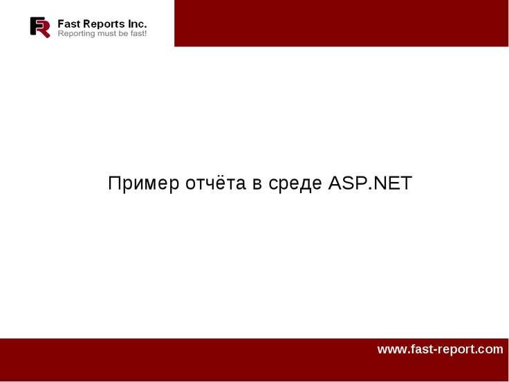 Пример отчёта в среде ASP.NET