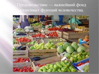 Продовольствие — важнейший фонд жизненных функций человечества.