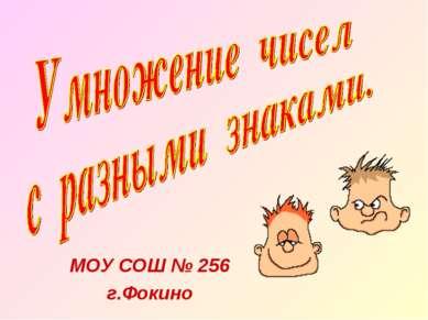 МОУ СОШ № 256 г.Фокино