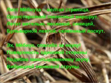 Лист Мёбиуса – желтая страница, Односторонний сказочный маршрут, Летит метель...
