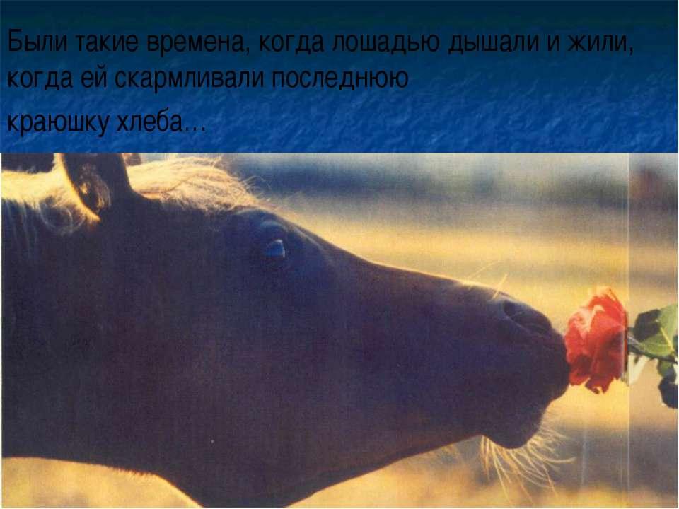 Были такие времена, когда лошадью дышали и жили, когда ей скармливали последн...