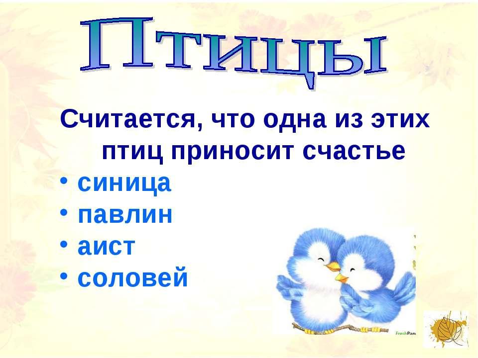 Считается, что одна из этих птиц приносит счастье синица павлин аист соловей