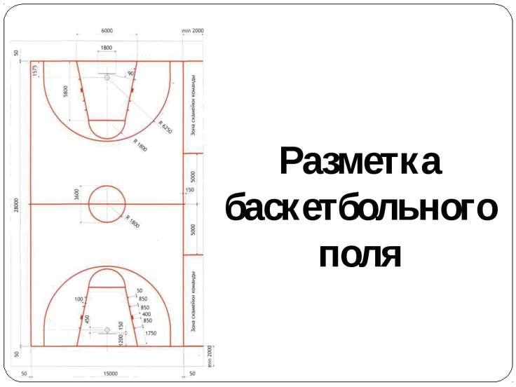 Разметка баскетбольного поля