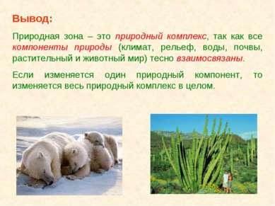 Вывод: Природная зона – это природный комплекс, так как все компоненты природ...