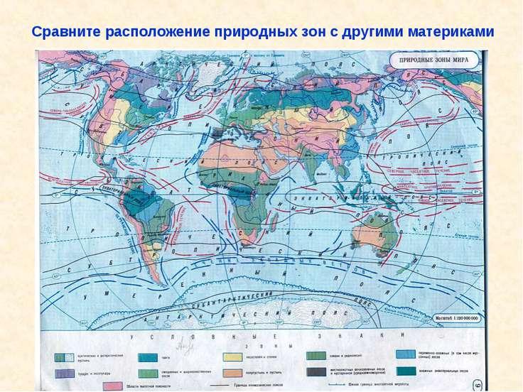 Сравните расположение природных зон с другими материками