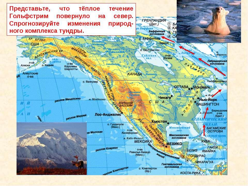Представьте, что тёплое течение Гольфстрим повернуло на север. Спрогнозируйте...