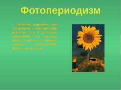 Фотопериодизм - Растения короткого дня (зацветание и плодоношение наступает п...