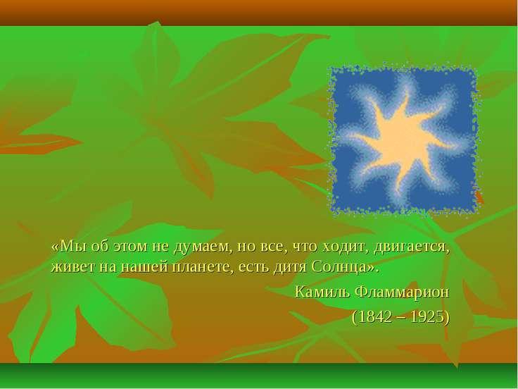 «Мы об этом не думаем, но все, что ходит, двигается, живет на нашей планете, ...