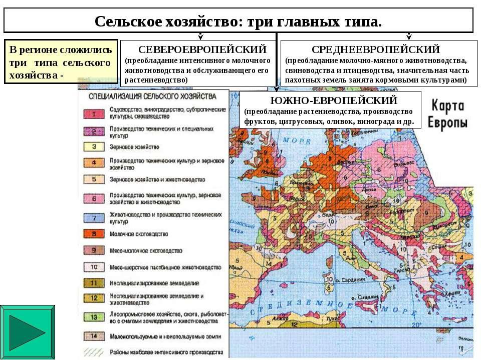 Сельское хозяйство: три главных типа. ЮЖНО-ЕВРОПЕЙСКИЙ (преобладание растение...