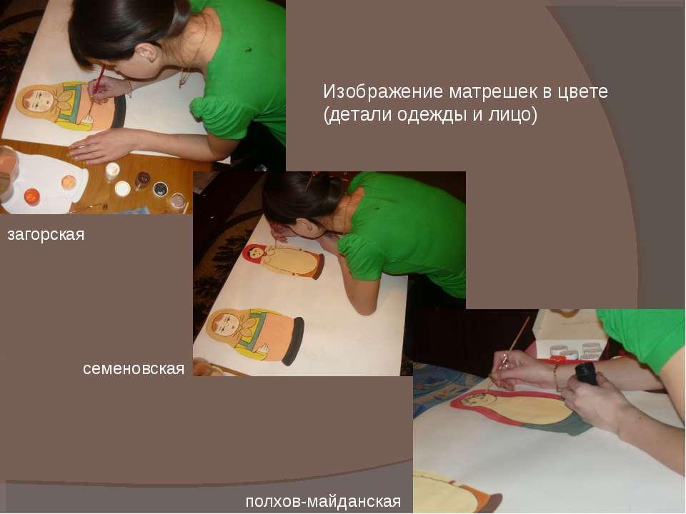 Изображение матрешек в цвете (детали одежды и лицо) загорская семеновская пол...