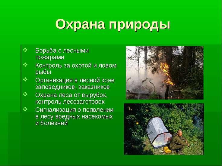 Охрана природы Борьба с лесными пожарами Контроль за охотой и ловом рыбы Орга...