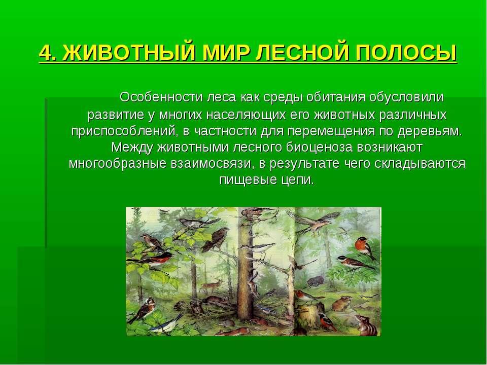 4. ЖИВОТНЫЙ МИР ЛЕСНОЙ ПОЛОСЫ Особенности леса как среды обитания обусловили ...