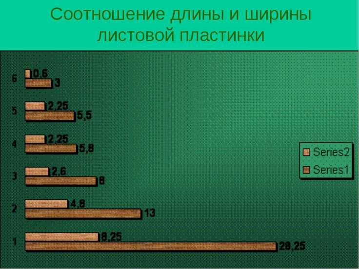 Соотношение длины и ширины листовой пластинки