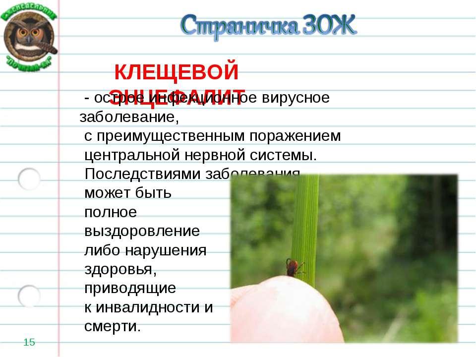 * КЛЕЩЕВОЙ ЭНЦЕФАЛИТ - острое инфекционное вирусное заболевание, с преимущес...