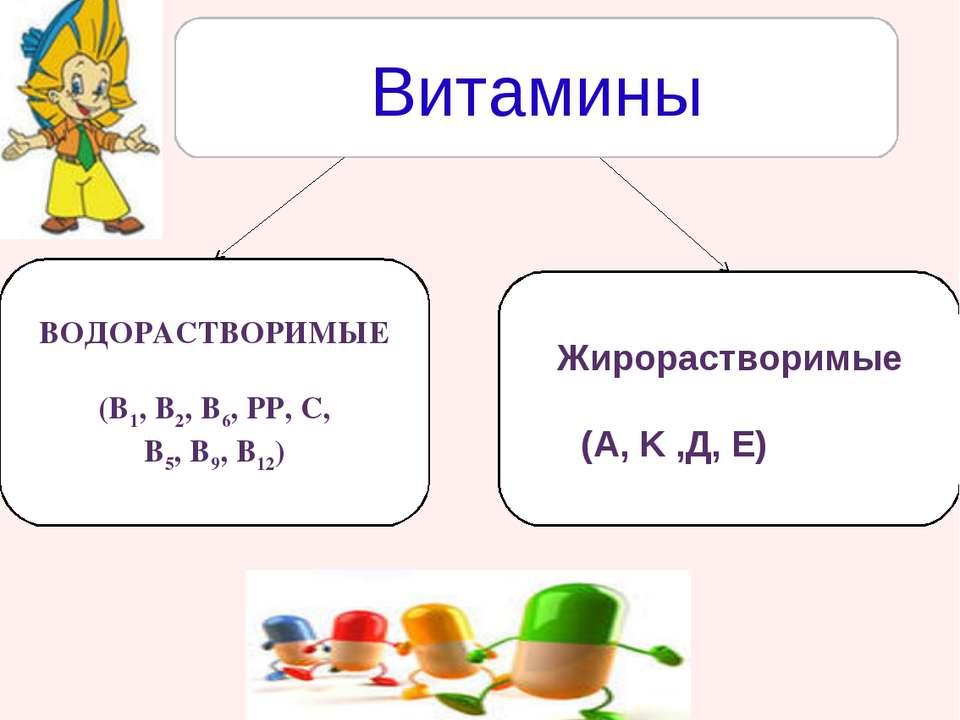 витамины в6 в1