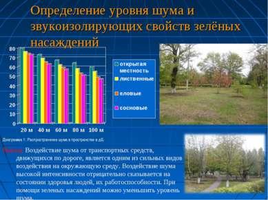 Определение уровня шума и звукоизолирующих свойств зелёных насаждений Диаграм...