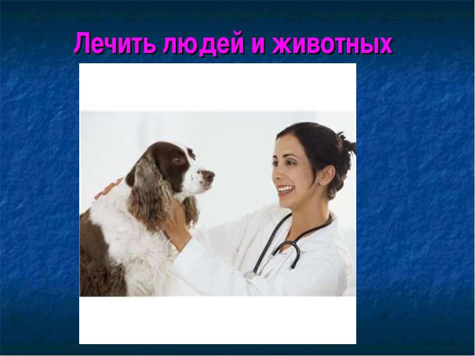 Лечить людей и животных